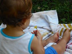Dolcezza | Baby Tribu | Proyecto Intikil