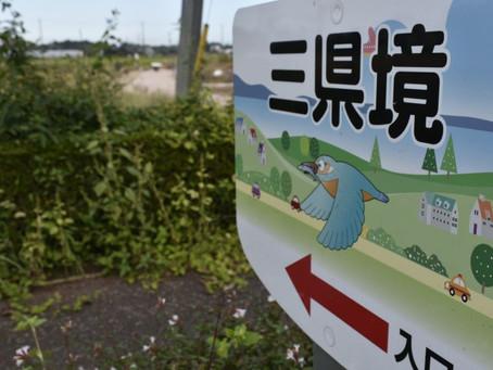 すぐの観光地!三県境&渡良瀬遊水地探索