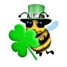 bee Irish.jpg