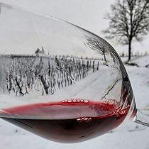 winesonw.jpg