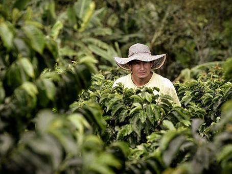 En Nespresso se une a la iniciativa de generar huella de carbono cero para 2022