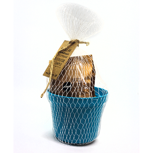Maceta de plástico económica N.8 - Semillas - ECOM6