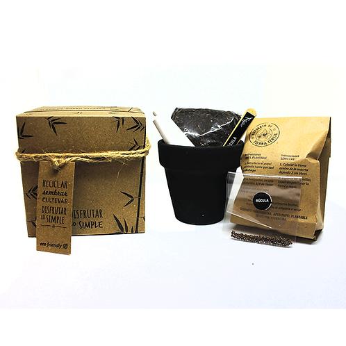 Maceta de barro pizarra N.8 con caja cartulina Kraft - Semillas - ECOM4