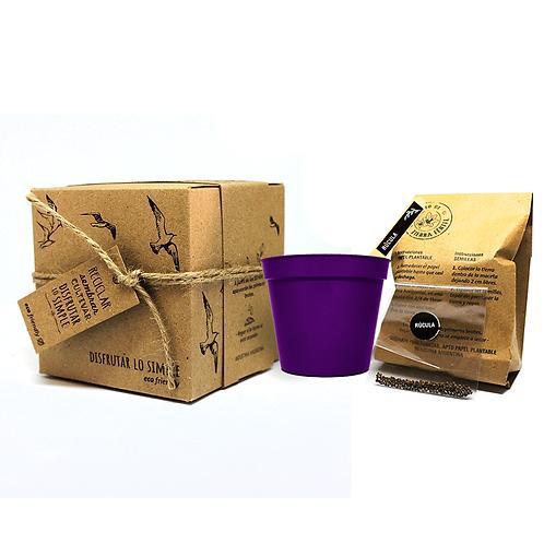 Maceta de plástico N.8 con caja  Kraft - Semillas - ECOM2