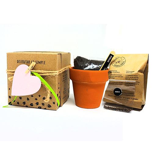 Maceta de barro N.8 con caja cartulina Kraft - Papel plantable - ECOM3