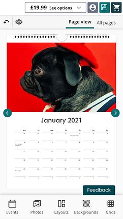 Screenshot 2021-02-19 at 13.47.41.png