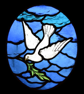 mary-wills-dove.jpg
