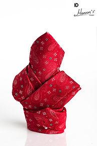 Red tie.jpg