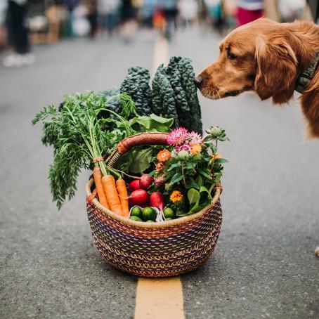Market Fresh Ideas
