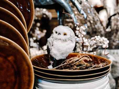 Holiday Inspiration at Pots & Paraphernalia