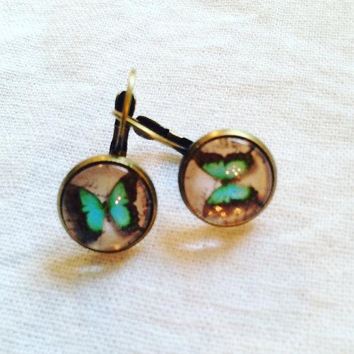 Boucles d'oreilles bronze papillons verts