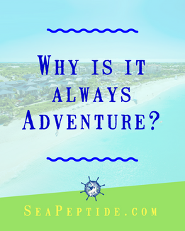 Why Is It Always Adventure???