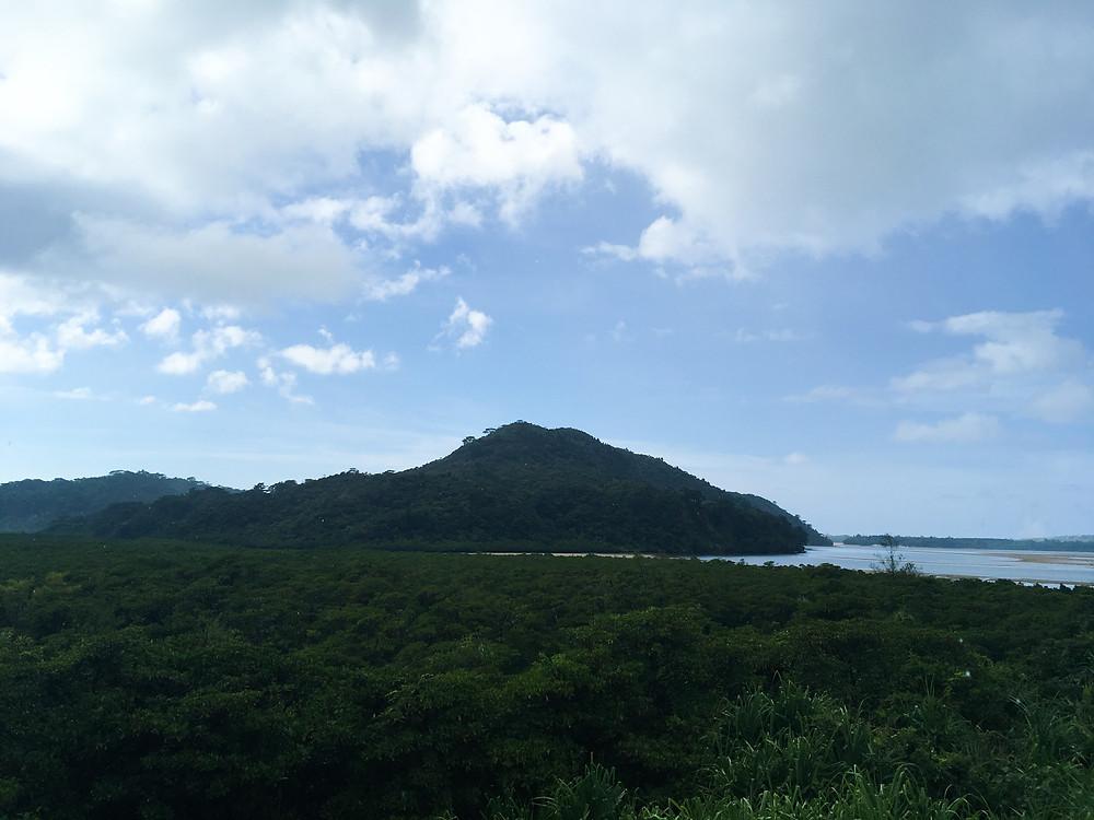 西表島 浦内川展望台 絶景