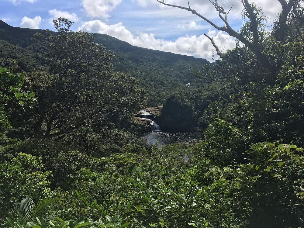 浦内川 マリュドゥの滝 カンビレーの滝