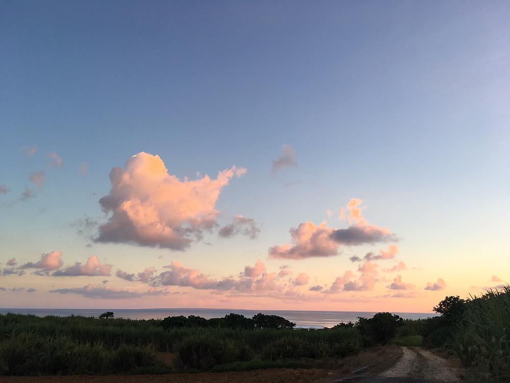 西表島の夕暮れ時