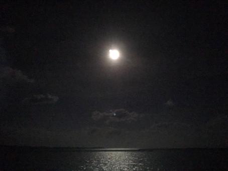 西表島の夜空