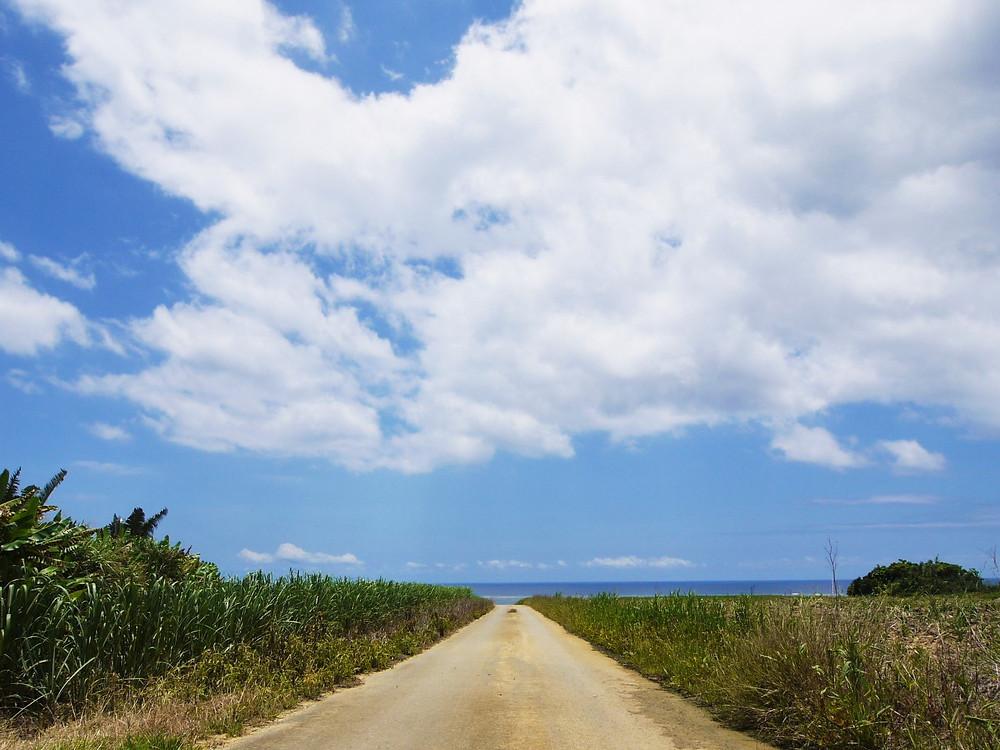 西表島 風景 レンタカー