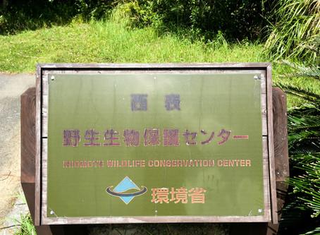 西表野性生物保護センター
