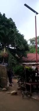 video-1629211049.mp4