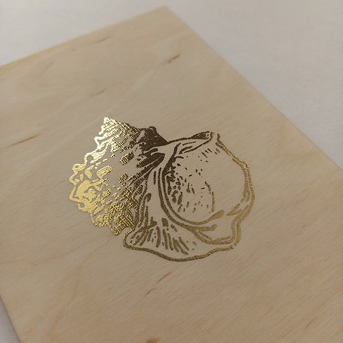 Carte coquillage 3