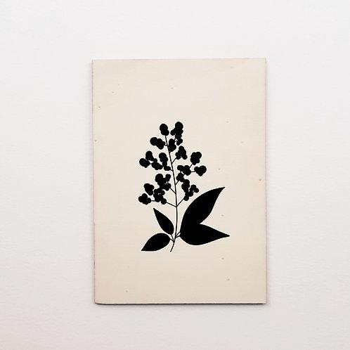 P-Carte bois sureau noir