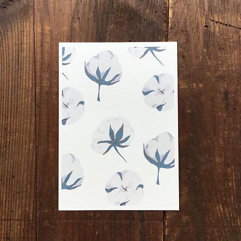 Carte Postale Fleurs de Coton Bleue