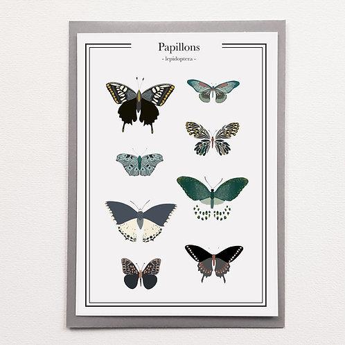 P-Affiche Papillons