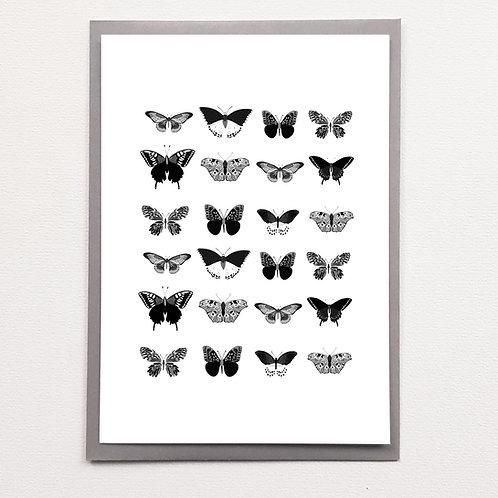 P-Affiche A5 Papillons