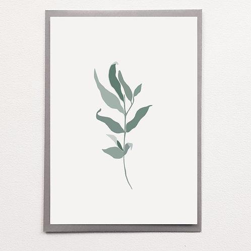 Carte Plante