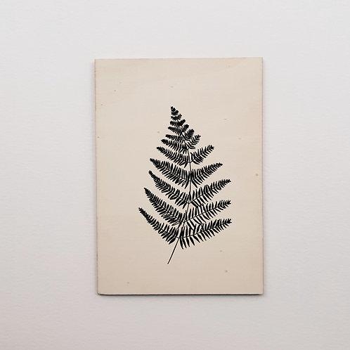 Carte bois fougère noire