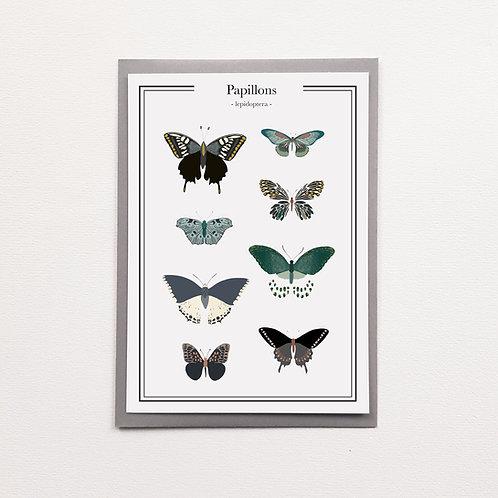 Carte planche papillons