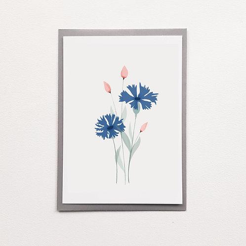 P-Carte Bleuet