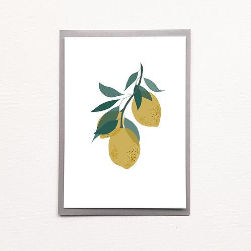 Affiche A5 citrons d'été
