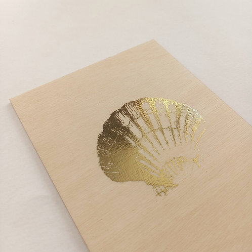 Carte coquillage 1