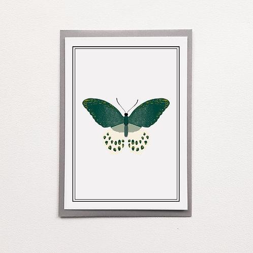 P-Carte Papillon