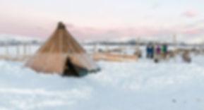 tromsoe-norge-tromsoe-safari-samisk-rens