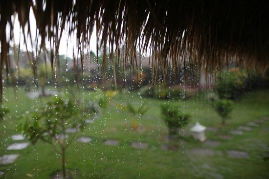 Rain troubles indonesian production