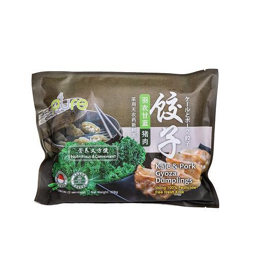 Kale & Pork gyoza dumplings