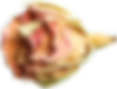 home-slider-content-img-2.png