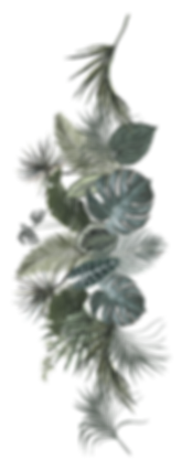 LeafsComposition_edited.png