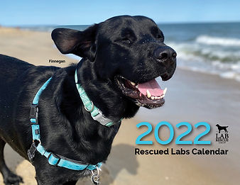 2022 Calendar Cover.jpg