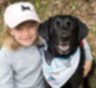 2020 Dog Walk Teaser