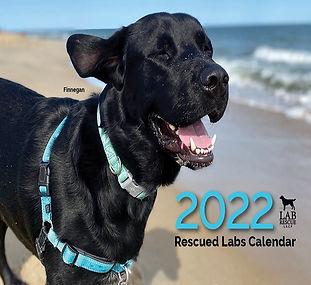 2022 Calendar Cover (Square)