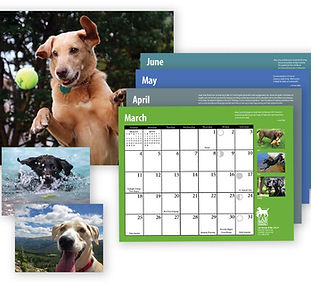 Calendar Contest Image.jpg