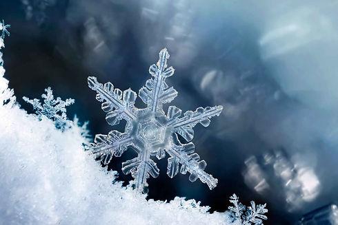 snow background.jpg