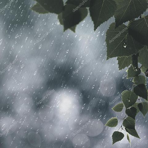 rainbackground.jpg