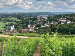 Ortsansicht aus Richtung Dorsheim