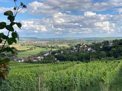 weitere Ortsansicht kommend von der Höhe aus Richtung Dorsheim