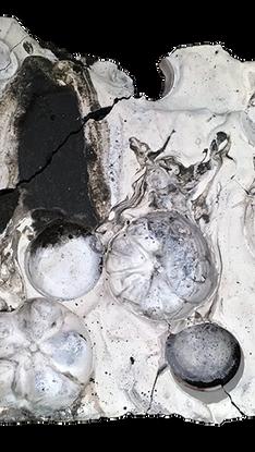 concreteandplaster.png