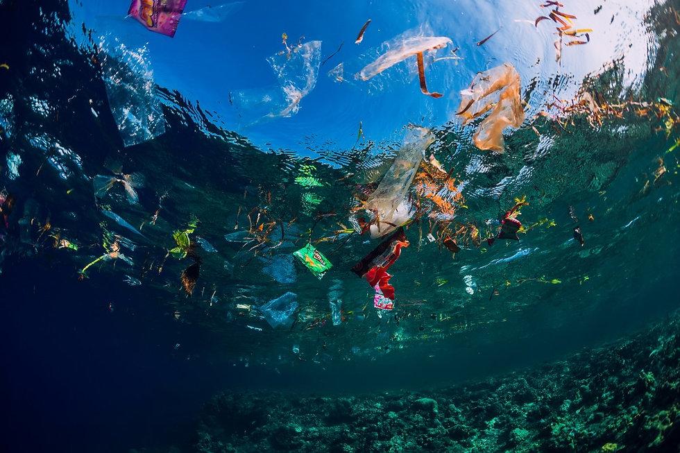 plastic ocean.jpeg